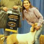 McLennan County Jr Livestock Show goats